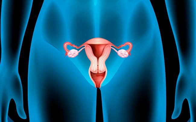 Заболевание женской репродуктивной системы